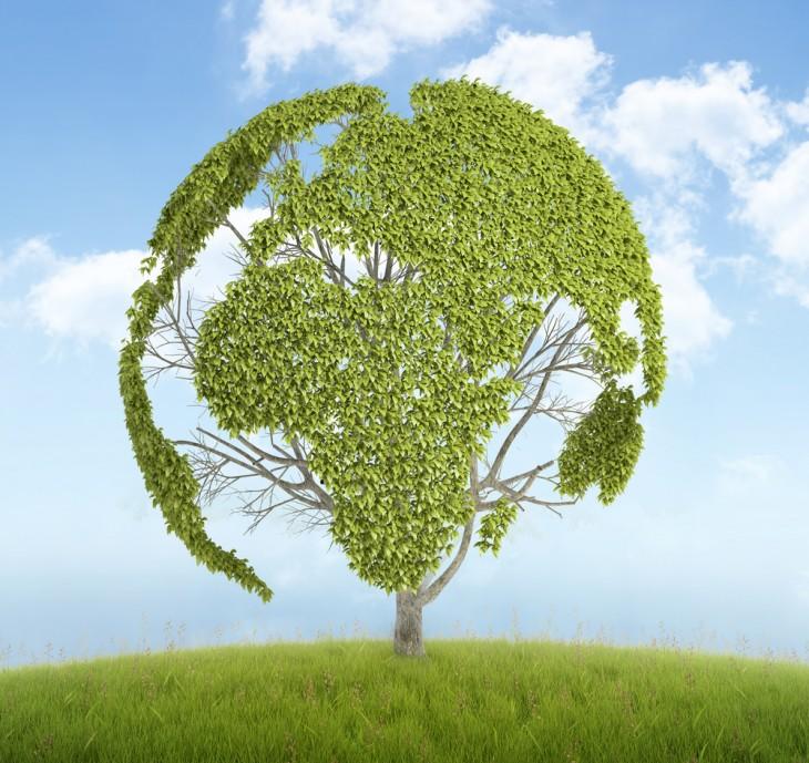 40 - Başarılı Yeşil Pazarlama Uygulamaları - muraterdor.com